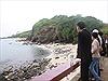 Xuân về trên đảo Cồn Cỏ