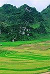Người Mông du xuân trên cao nguyên đá Tủa Chùa