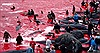 'Làm thịt' cá voi trên biển