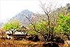 Quy hoạch tổng thể phát triển Khu du lịch quốc gia Mộc Châu