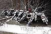 Tuyết phủ trắng vùng cao, QL 4D tê liệt vì quá tải xe lên Sa Pa