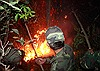 Đà Nẵng lại xảy ra cháy rừng