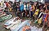 Philippines: 325 người thiệt mạng do bão Bopha