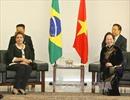 Thúc đẩy quan hệ hữu nghị và hợp tác toàn diện Việt Nam - Brazil