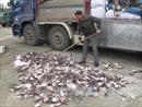 Bắt hơn 21 tấn mực khô bốc mùi hôi thối từ Quảng Ngãi