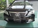Sau Lexus, Toyota VN thu hồi tiếp hơn 2.400 xe Camry