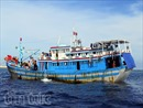 Ngư dân Trường Sa bám biển trong mùa đánh bắt