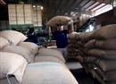 Xuất khẩu nông sản sẽ khởi sắc trở lại