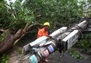 Các địa phương dọn dẹp hiện trường ngổn ngang sau bão