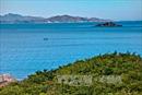 Quỹ Vì biển đảo quê hương - Vì tuyến đầu Tổ quốc tiếp nhận hơn 30 tỷ đồng