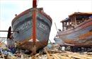 Tiếp sức cho những con tàu vươn khơi