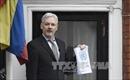 """WikiLeaks cảnh báo tiết lộ thông tin """"nguy hiểm"""" đối với bà Hillary"""