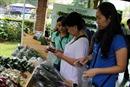 Nở rộ chợ phiên nông sản sạch