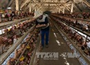 Cách phân biệt trứng gà trên thị trường