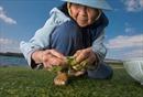 Bí quyết để sống hơn 100 tuổi