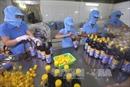 DN nước mắm truyền thống hợp tác nâng cao chất lượng
