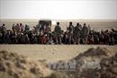 Hơn 10.000 người sơ tán khỏi Mosul