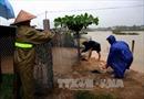 Đề phòng lũ quét tại vùng núi Quảng Nam, Quảng Ngãi, Bình Định