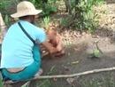 Đã bắt được đối tượng hành hạ bé trai ở Campuchia