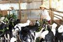 Nâng cao đời sống của đồng bào dân tộc các huyện miền núi giáp Tây Nguyên
