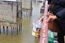 Độc đáo 'công nghệ' giúp dân thả cá chép từ cầu Long Biên