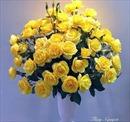 Cùng cắm hoa hồng đẹp đón Xuân Đinh Dậu