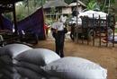 Hỗ trợ gần 1.700 tấn gạo cho nhân dân 2 tỉnh Quảng Bình, Sóc Trăng