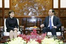 Chủ tịch nước tiếp Đại sứ Singapore chào xã giao