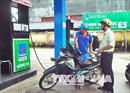 Cần có chính sách kéo giá xăng E5 xuống thấp hơn nữa