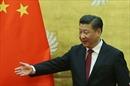 Giáo sư Trung Quốc mách ông Tập Cận Bình 'chiêu' bắt tay với ông Trump