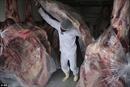Nhiều nước yêu cầu Brazil tạm ngừng xuất khẩu thịt