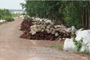 Đồng Nai: Hàng nghìn tấn chất thải lạ đổ đống giữa rừng tràm