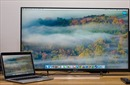 Có nên dùng màn hình tivi làm màn hình máy tính?