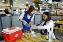 Bộ Công Thương phân trách nhiệm quản lý cồn công nghiệp, methanol