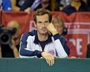 Tứ kết Davis Cup 2017: Vắng Murray, Nadal giải đấu kém vui
