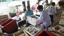 Chợ Đồng Xoài gắn camera giám sát nguồn gốc thực phẩm