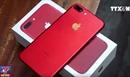 Hơn 130 chiếc iPhone 7 đỏ trị giá gần 3 tỷ đồng nhập lậu qua đường hàng không