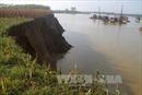 Thành lập tổ công tác xử lý tình trạng khai thác cát trái phép trên sông Lô