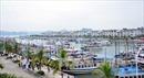 Du khách tự tử trên tàu du lịch ở Quảng Ninh: Tàu không được cấp phép hoạt động từ đầu năm 2017