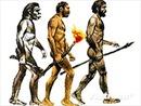 Giả thiết mới về nguồn gốc loài người