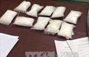 Điện Biên: Thanh niên 8X táo tợn vận chuyển 1.600 viên ma túy tổng hợp