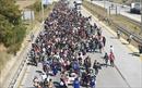 Châu Âu hưởng lợi lớn nếu kết nạp Thổ Nhĩ Kỳ?