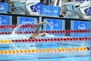 Ánh Viên giành HCB 100m tự do nữ, Quý Phước đoạt HCB 200m tự do nam