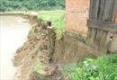 Sạt lở bờ sông Krông Nô đe dọa 'nuốt chửng' nhà dân