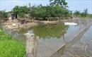 Gỡ 'nút thắt' dồn đổi ruộng đất ở Phú Thọ