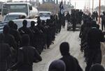 Saudi Arabia điều chiến binh từ Syria tới Ukraine 'trả thù Nga'
