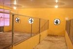 Bỏ không khu kiểm dịch động vật hàng chục tỷ đồng