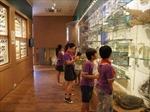 Khai trương phòng trưng bày tiến hóa sinh giới đầu tiên