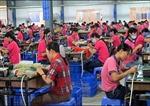 Công nhân các KCN ở Đồng Nai đã trở lại làm việc bình thường