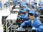 Niên giám Thương mại Ireland: 'Việt Nam - một thị trường năng động'